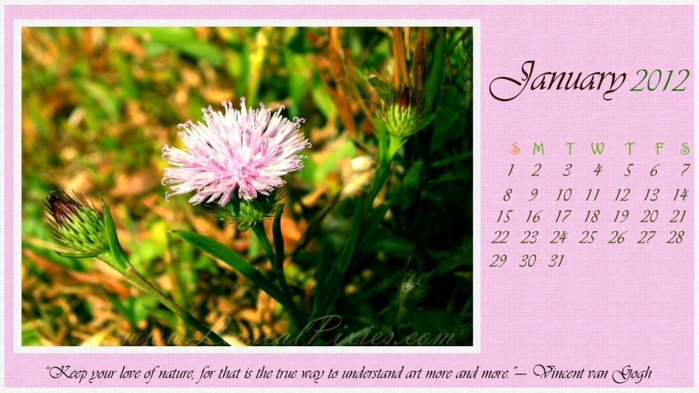 January 2012 Calendar Wallpaper