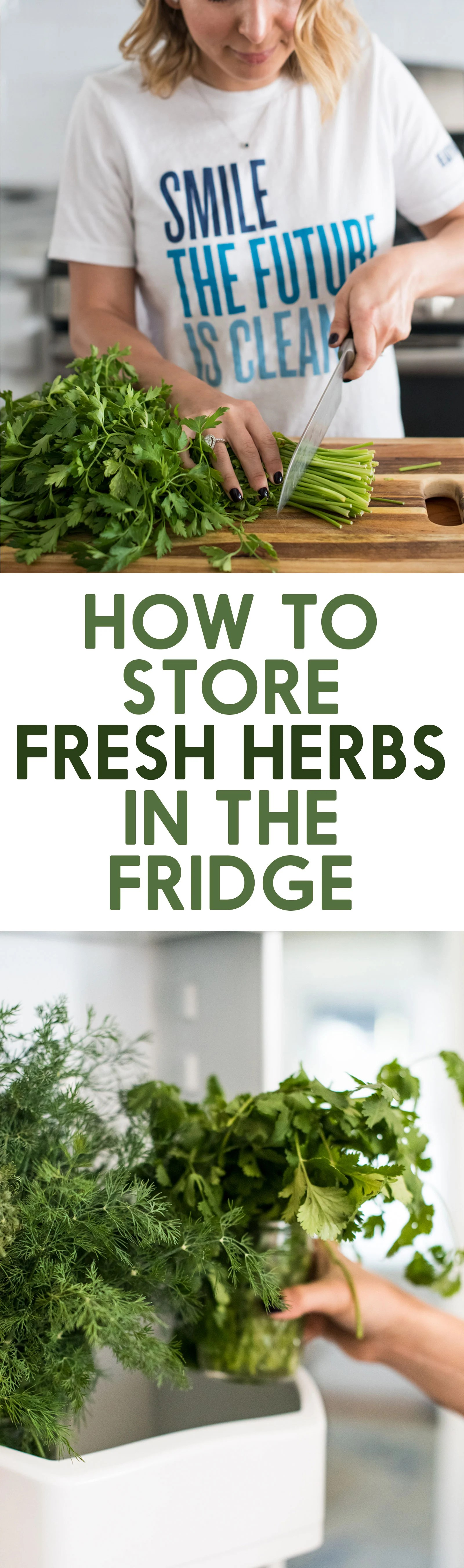 How to Store Fresh Herbs in the Refrigerator - Lexi's ...