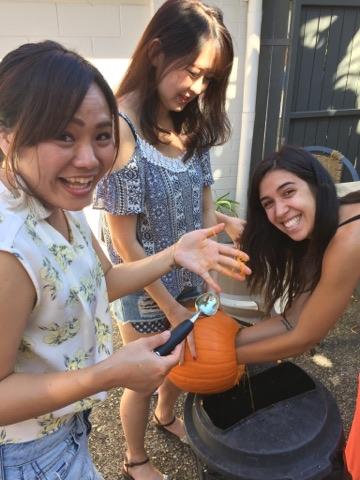 Pumpkin winner 2