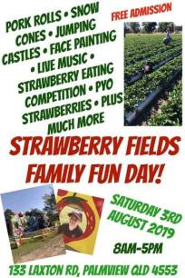 Strawberry Fun Day