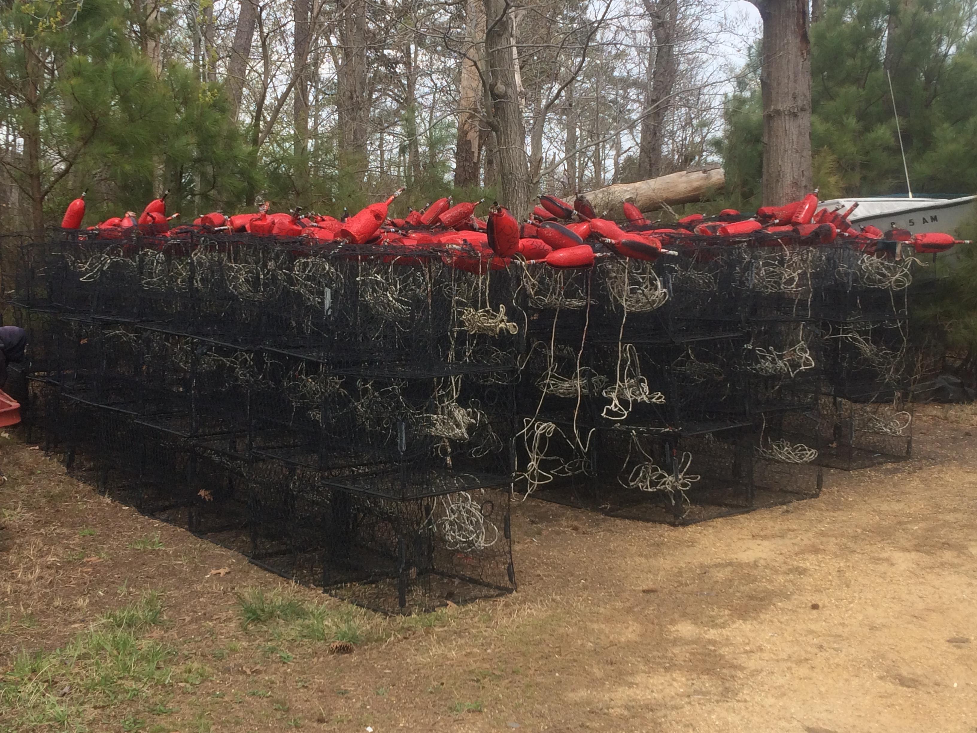 crabpots 2016