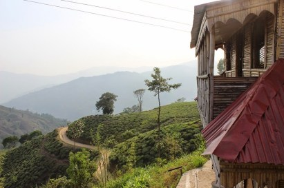 The view from Chiyabari Cottage - Ilam