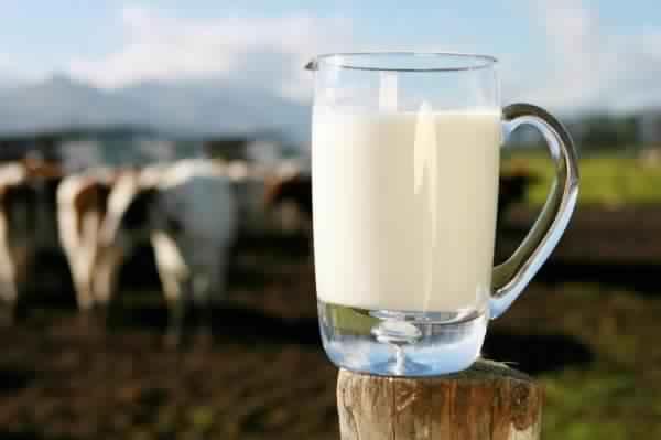 جلسة حاسمة ومصيرية فيما يتعلق بمنظومة الحليب