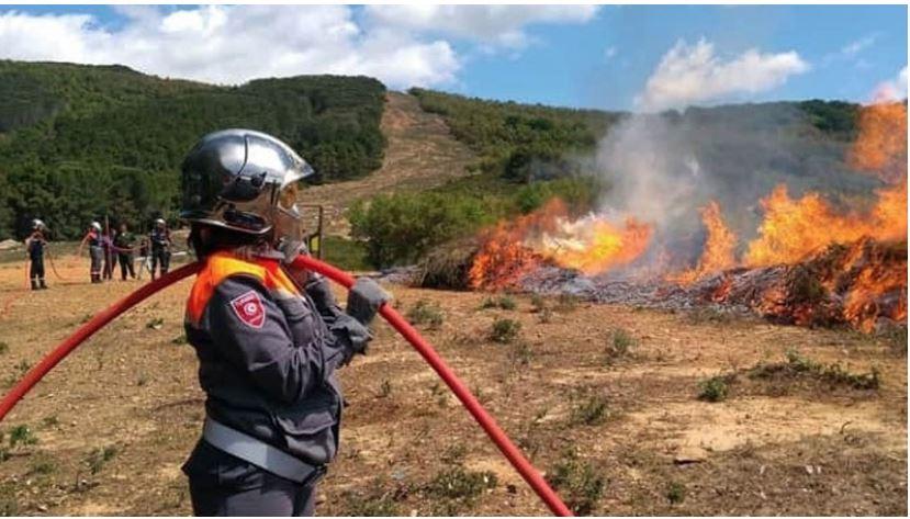 الحماية المدنية: إطفاء 78 حريقا في يوم واحد