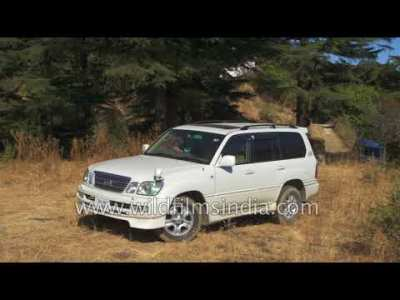 Lexus LX470 Toyota Land Cruiser platform SUV for sale in India