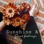 Sunshine & Good Feelings