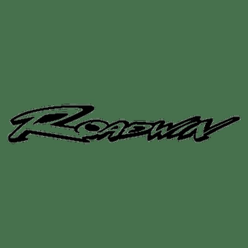 Sticker Daelim Roadwin 125 Fi logo N°3