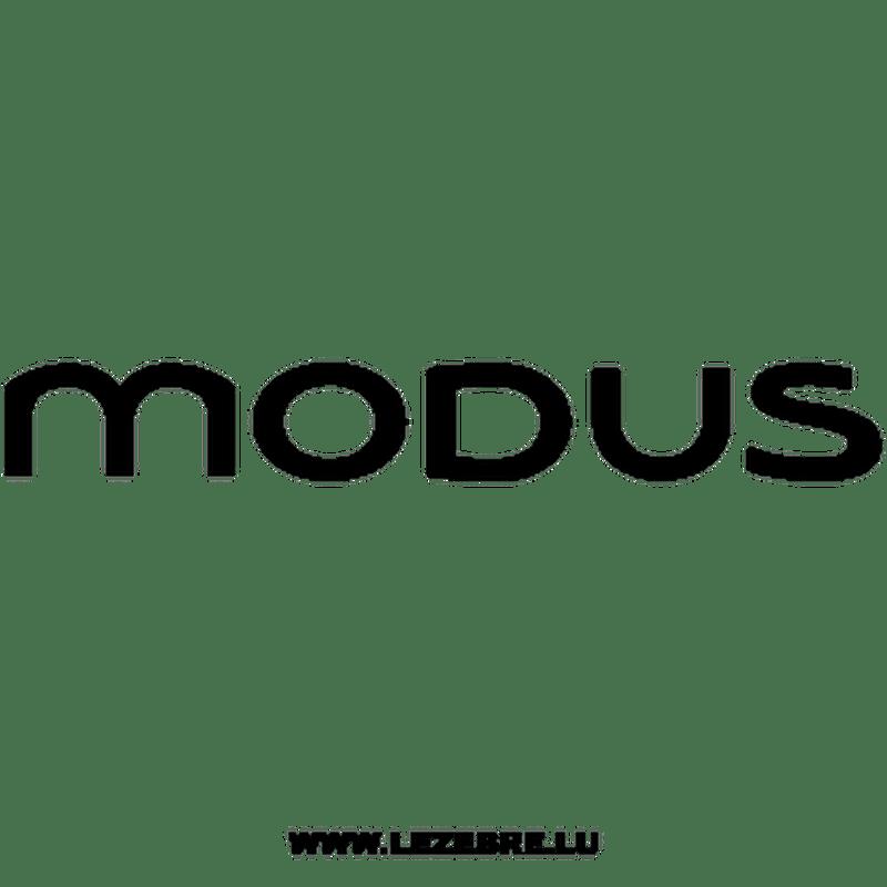 Sticker Renault Modus