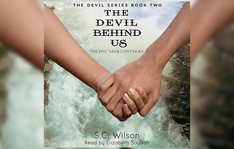 wlw historical fiction book