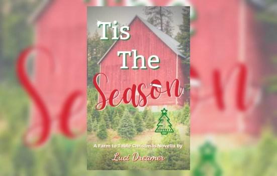 Christmas wlw romance novella