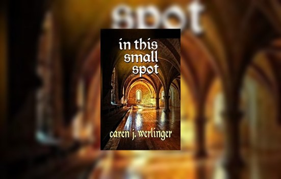In This Small Spot by Caren J. Werlinger