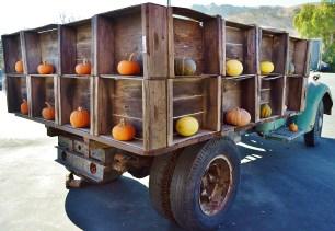 Squash Truck