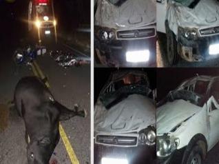 Delegado-Chefe da Policia Civil de Juazeiro sofre grave acidente na BR-235 e tem uma das mãos amputada