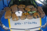 Estrada do Coco: PM prende casal e apreende 15 kg de maconha