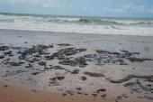 Pedido para instalação de barreiras no litoral de Sergipe é negado