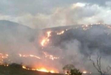 Incêndio destrói área de vegetação equivalente a 540 campos de futebol no sudoeste da Bahia