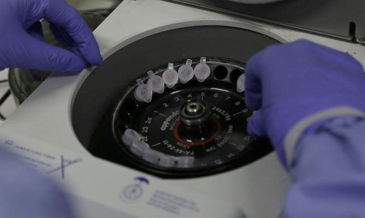 Sobem para 11 os casos suspeitos de infecção pelo coronavírus no Brasil