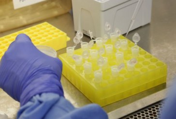 Número de casos suspeitos do novo coronavírus cai para 13 no país