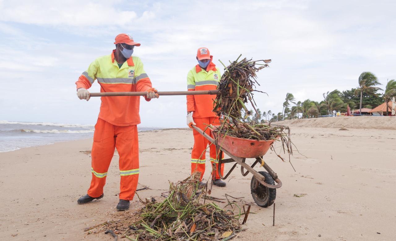 Prefeitura intensifica retirada de baronesas das praias de Ipitanga, Buraquinho e Vilas do Atlântico