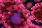 Só 9% dos infectados por coronavírus se dizem assintomáticos, diz estudo