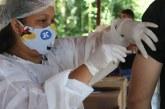 Brasil pode sofrer com falta de seringas na aplicação da vacina da Covid-19, alertam fabricantes