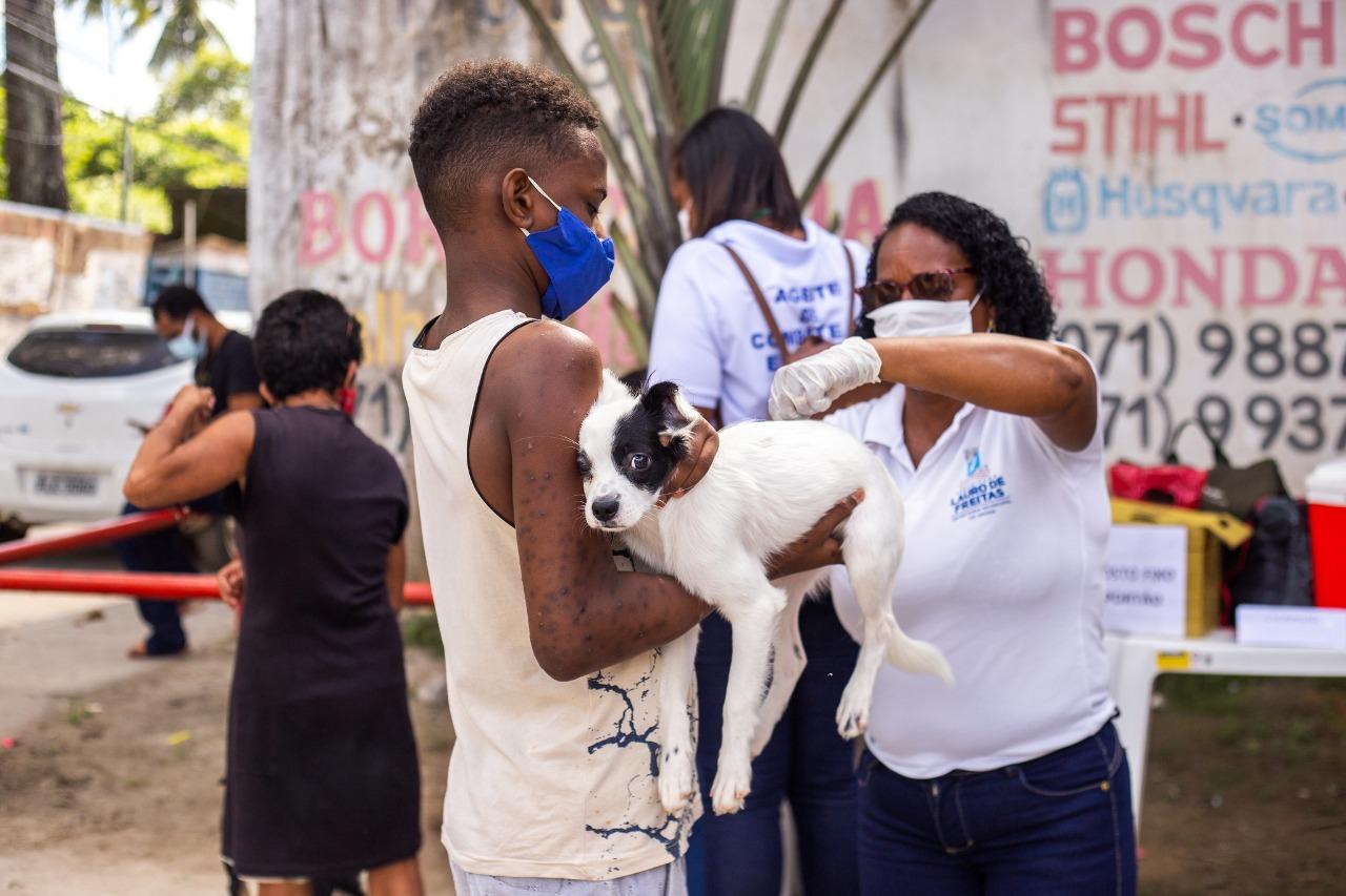 CCZ intensifica ações de combate ao Aedes aegypti e vacina 380 animais contra a raiva no Parque São Paulo