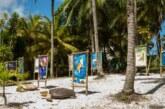 Lauro de Freitas realiza campanha educativa sobre período de desova das tartarugas marinhas