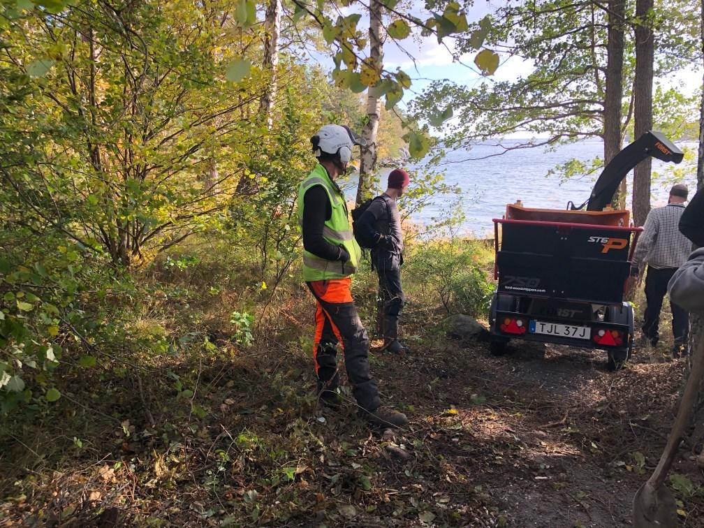 Tack för allt arbete på höstens naturvårdsdag!