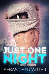 Book Cover: Just One Night