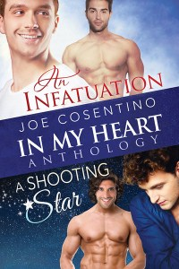 Book Cover: In My Heart: An Infatuation and A Shooting Star