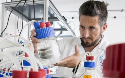 Benjamin ERABLE, médaille de bronze du CNRS 2020