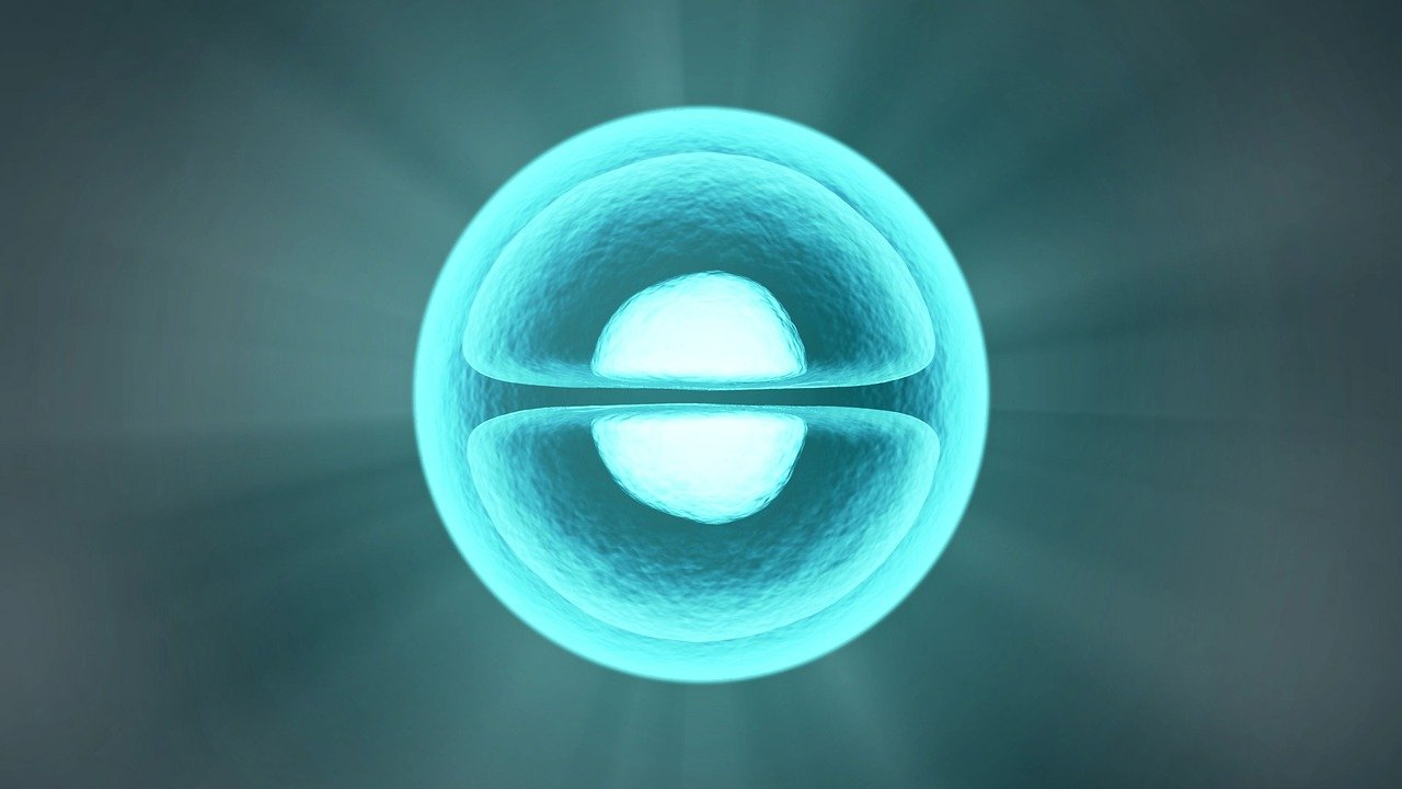 Update de ML Bio Solutions sur le développement du BBP-418 (Ribitol) | Blog GI LGMD