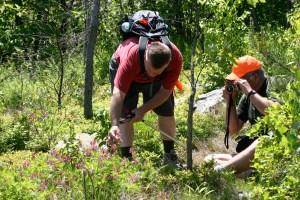 Natural History Hike - Little Gap to Lehigh Gap