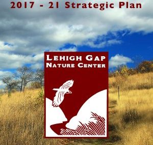 Strategic Plan, 2017-21