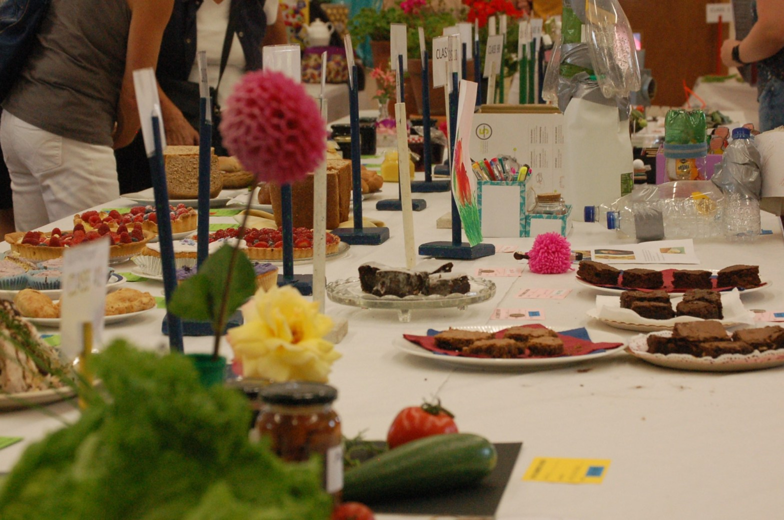Photo of entries for Village Show 2019