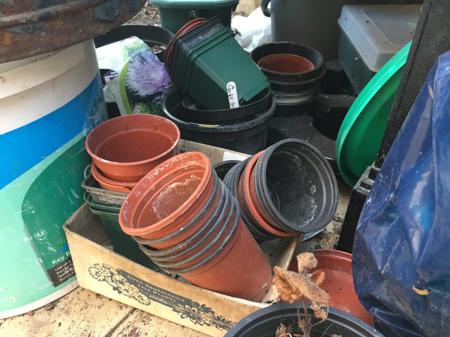 Photo of plastic pots...somewhere in Little Gaddesden