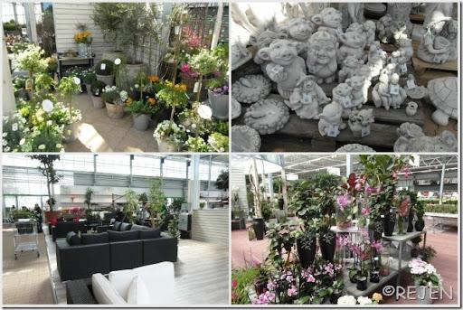8-4-2012 Plantorama1