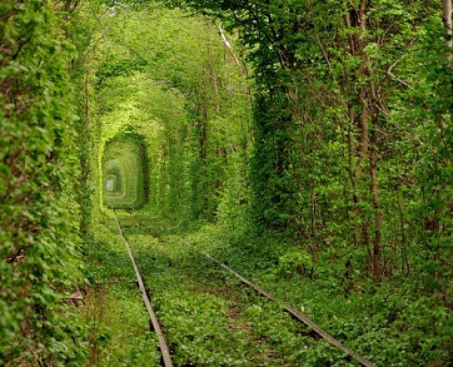 tunnel-of-love-2