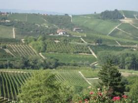 piemonte wine tours