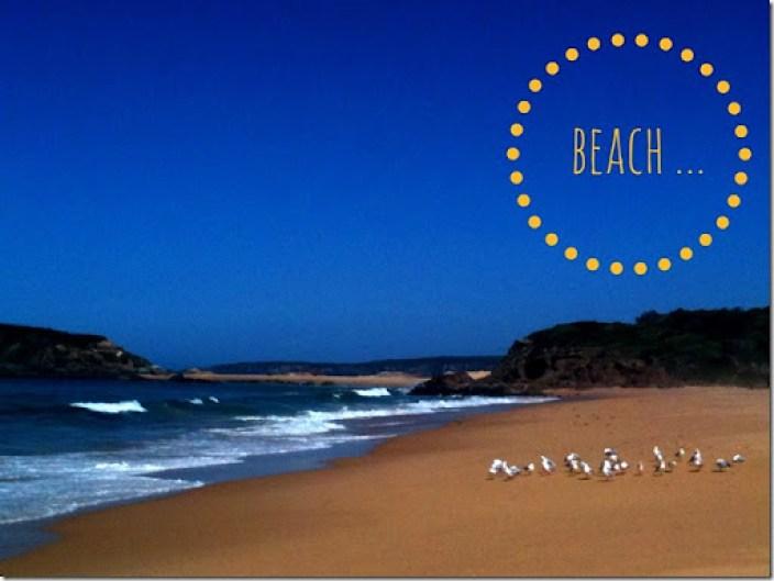 beach bournda