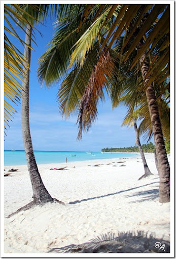 postcard from Saona