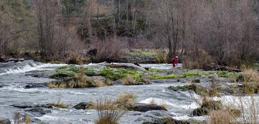 Rogue River at Gold HIll (5 of 13)