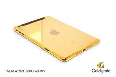 Goldgenie Mini iPad v2