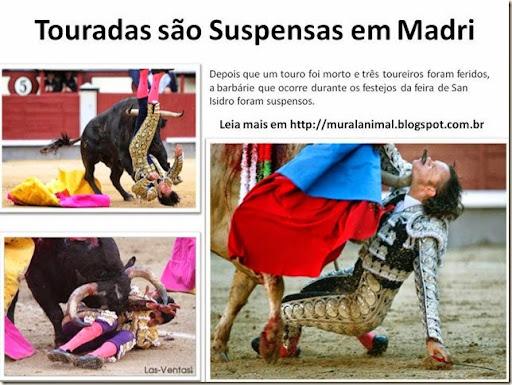 Touradas são Suspensas em Madri