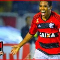 Elias é eleito o melhor jogador do Flamengo em 2013