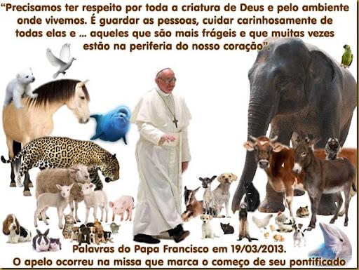 francisco-animais
