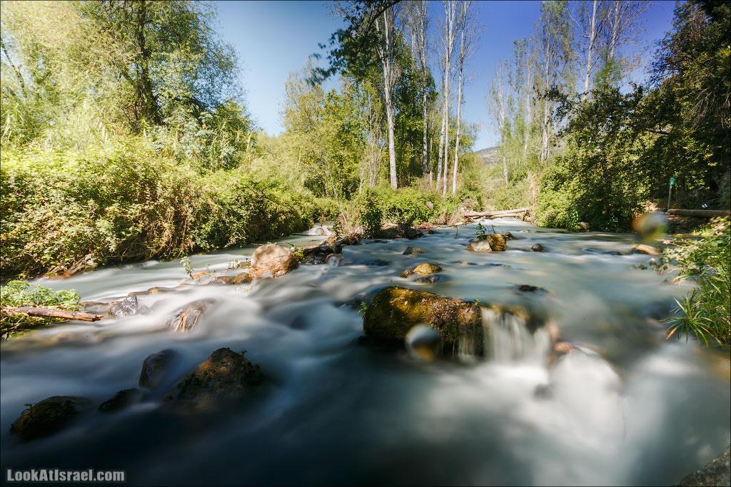 Молочные реки заповедника Баниас