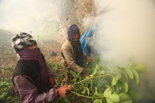 honey-cacciatori-nepal-17