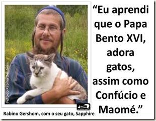 papa_ama_gatos (19)