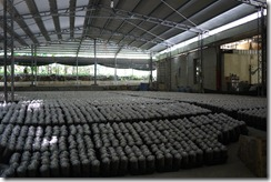 2011-09-10 埔里 049